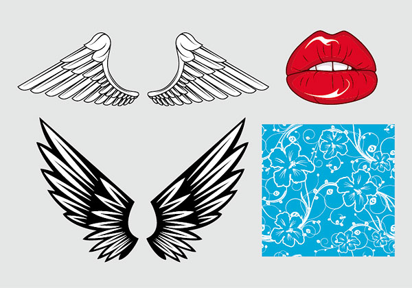 Wings, lips Vector