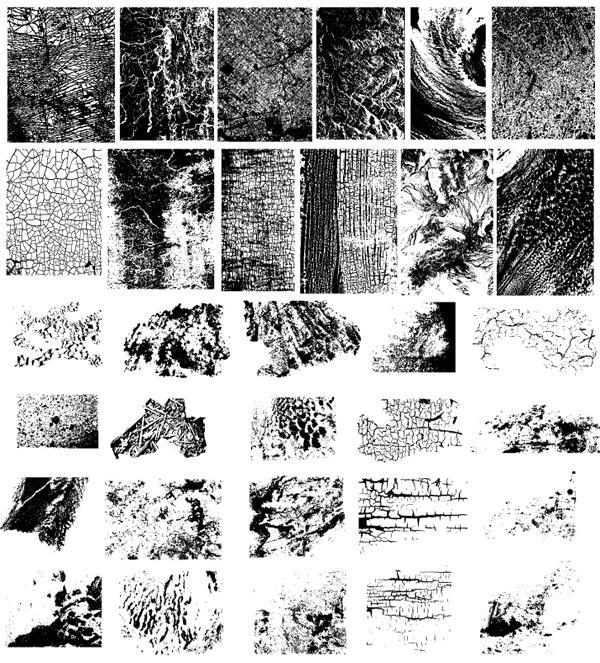 gomedia Chupin texture vector