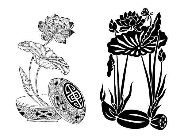 Lotus, lotus root vector
