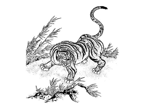 Tiger Classic Vector material