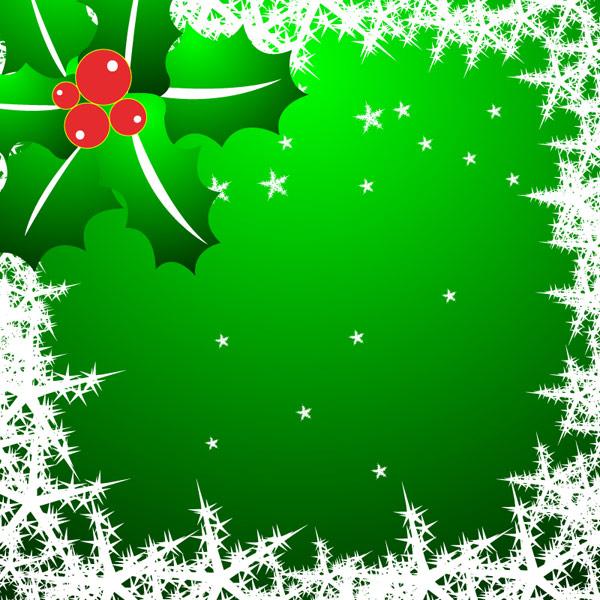 Snowflakes, stars, pine needles vector