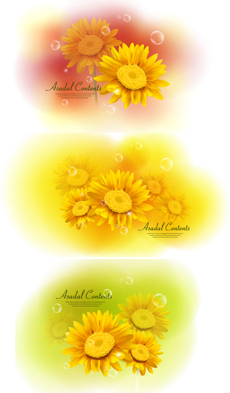Yellow Chrysanthemum dimorphotheca Vector Materials