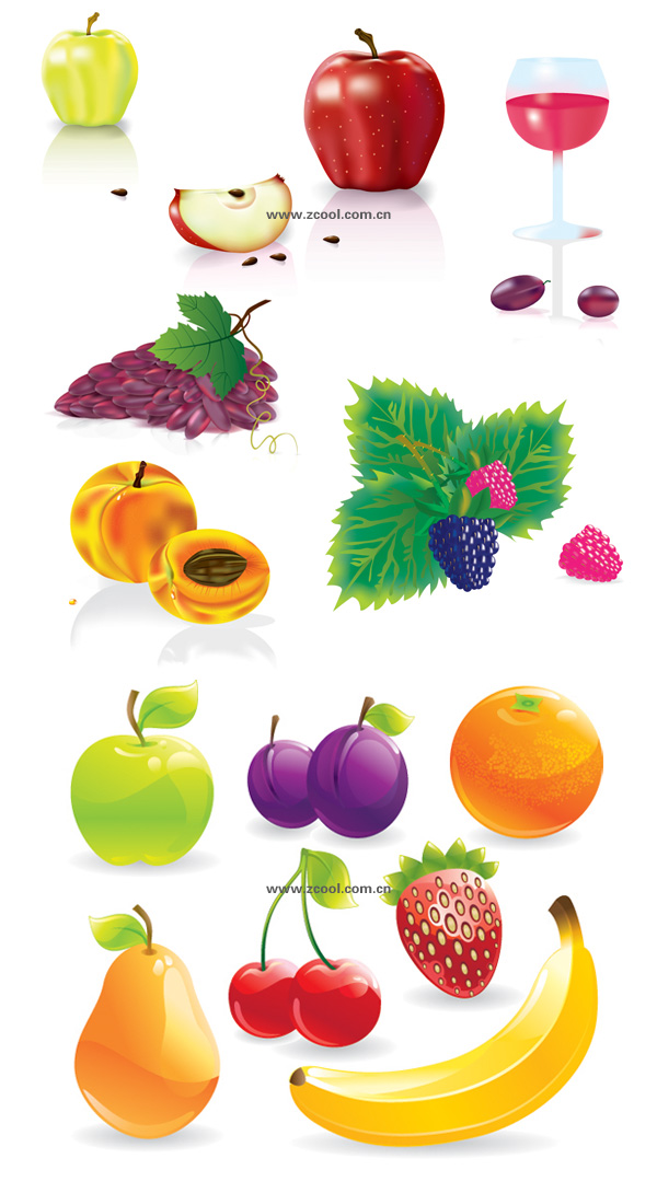 Several common fruits vector material