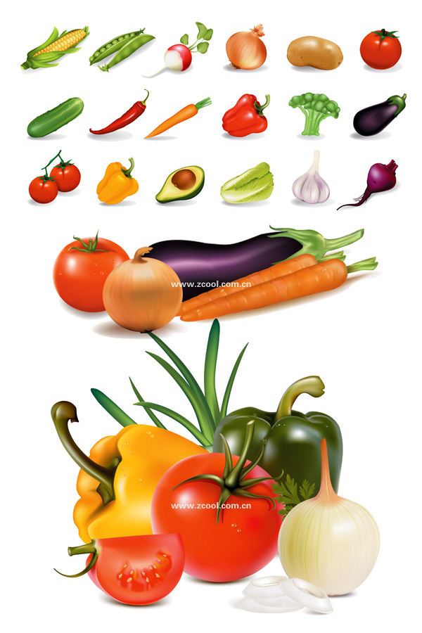 Several common vegetables vector material