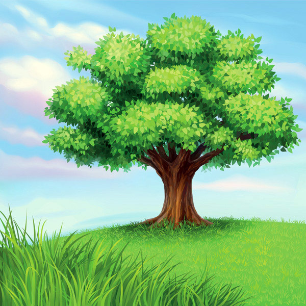 A tree vector material