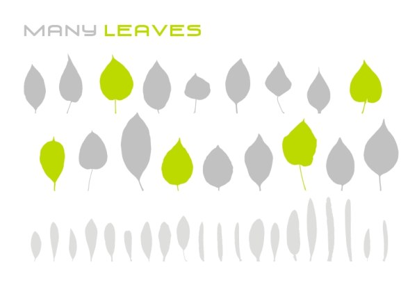 Variety of leaves Vector