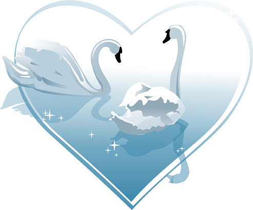 Heart-shaped white swan vector of material