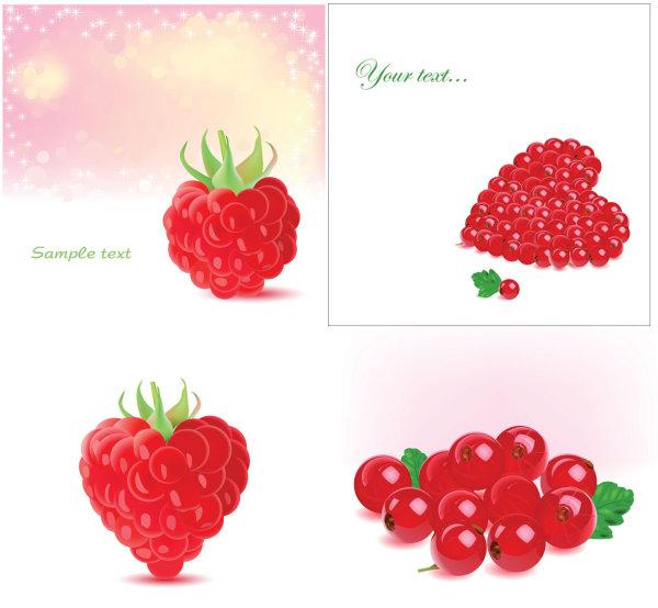 Romantic berries vector of material