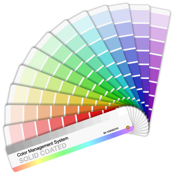 Vector color card paper
