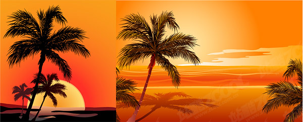 Coconut beach sunset shadow vector