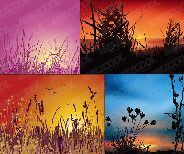 Vector sunset scenery