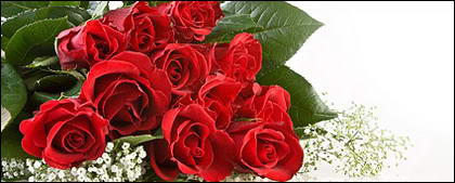 Bouquet of red roses picture