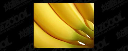 Featured banana quality picture material-4