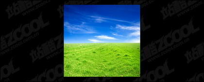 Grass sky picture material-5
