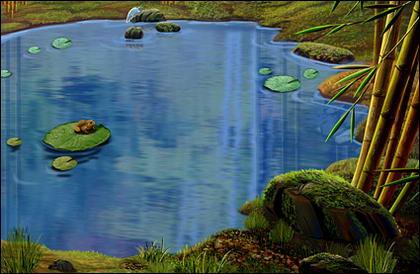 Ponds, lotus leaf, the frog