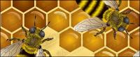 ミツバチのテーマ ベクトル イラスト素材