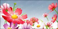 Hermosas flores de vectores de material