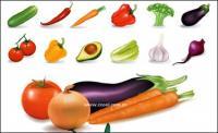 Beberapa sayuran umum vektor bahan