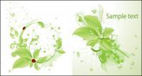 يسقط ناقل ladybird ورق أخضر المواد