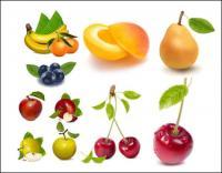 AI vektor gambar realistis buah