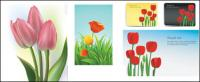 Tulpen Vektor des Materials