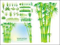 Vector bambú césped vegetal