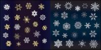 아름 다운 눈이 벡터의 다양 한