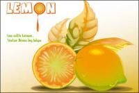 Лимонный векторного материала