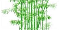 El material de vector de bambú verde