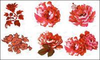 ดอกไม้สีชมพู psd วัสดุ