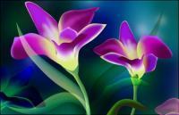 ชุดรูปแบบที่คมชัดเป็นพิเศษซูเปอร์ดอกไม้-2