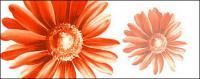الزهور المطلية اليد ذات طبقات 12 psd المادية