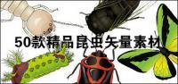 สวยงามพร้อมแมลง-1