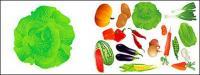 Frutas de vector y verduras