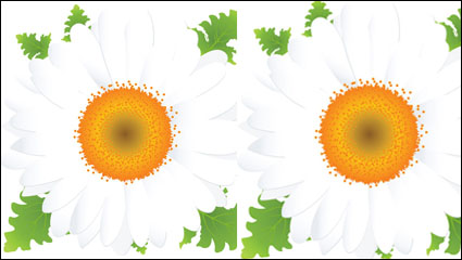 Beautiful small flowers vector material -2